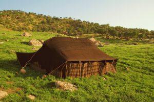سیاه چادر